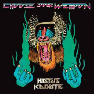 choose-your-weapon-hiatus-kaiyote-large